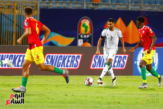 الجزائر وغينيا 0 (14)