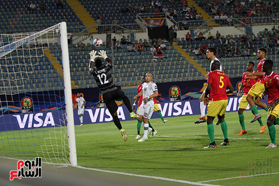 الجزائر وغينيا 0 (26)