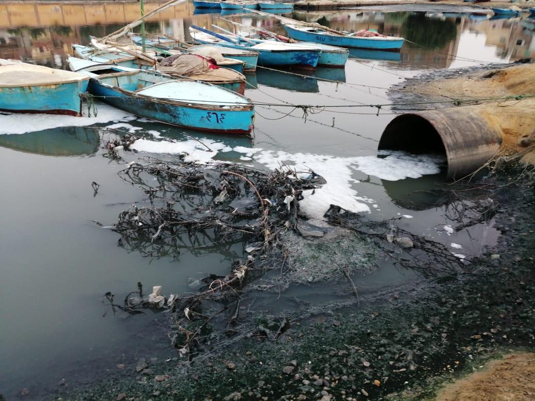 إلقاء مخلفات الصرف الصحى والزراعى فى البحيرة المرة بفنارة تقضى على الثروة السمكية والسياحة (4)