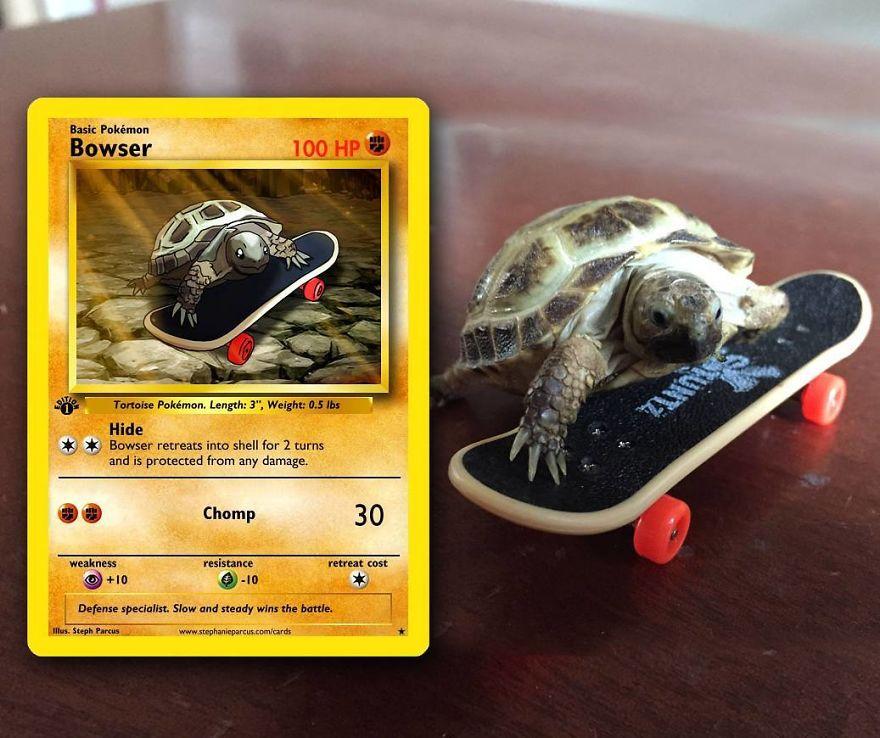 Pokémon Cards 2