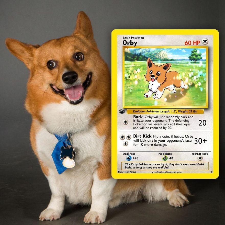 Pokémon Cards 1