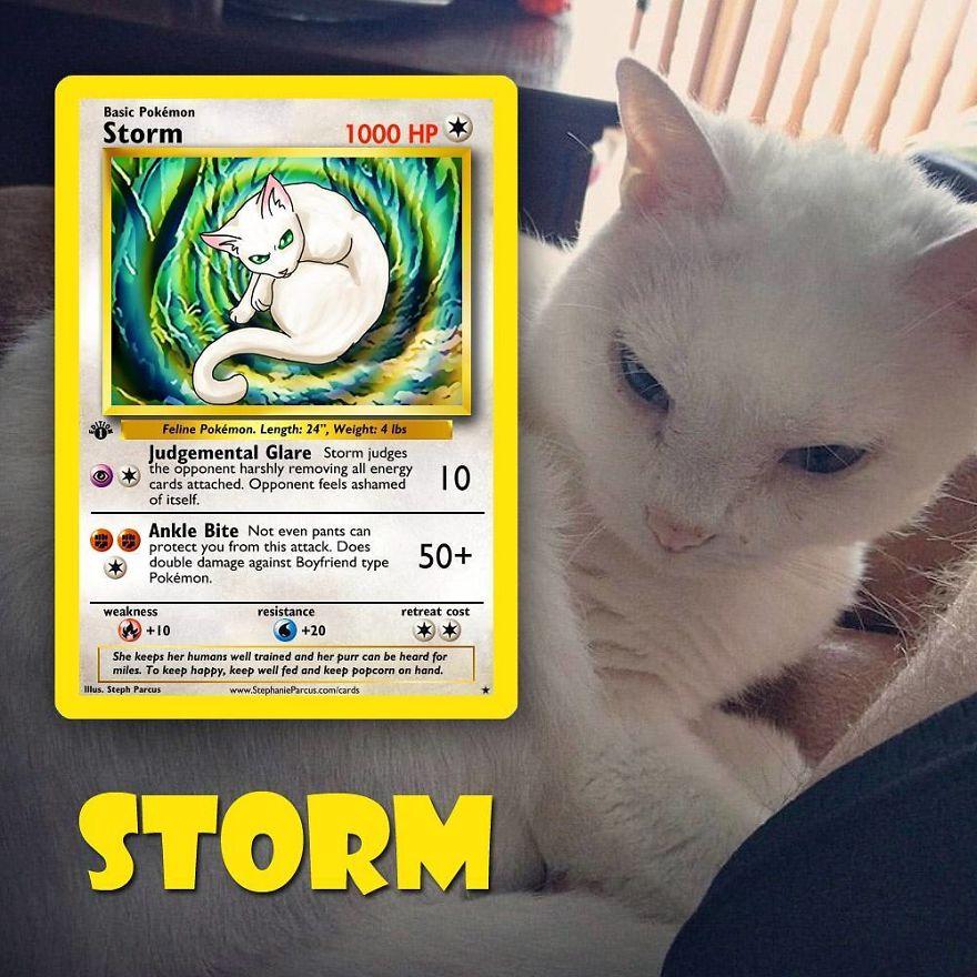 Pokémon Cards 7