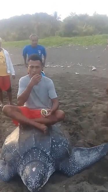 رجل يأكل ويجلس على السلحفاة