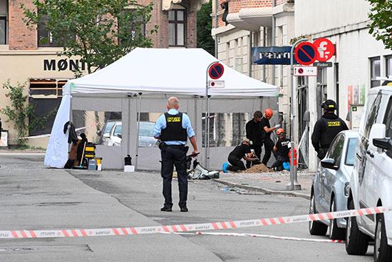 الشرطة الدنماركية فى موقع الحادث