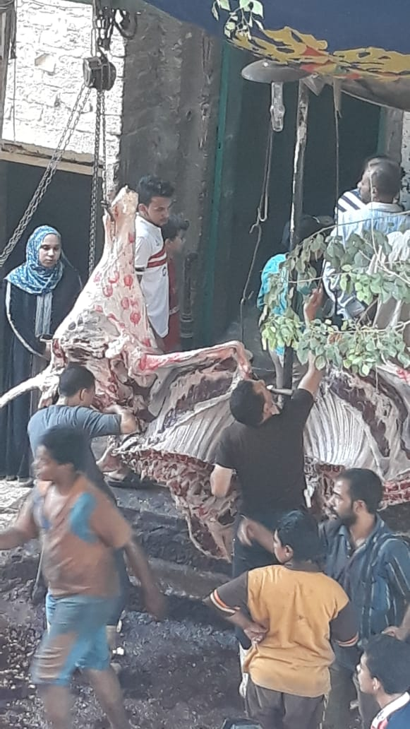 102817-تزوير-ختم-المجازر-على-أضاحى-العيد