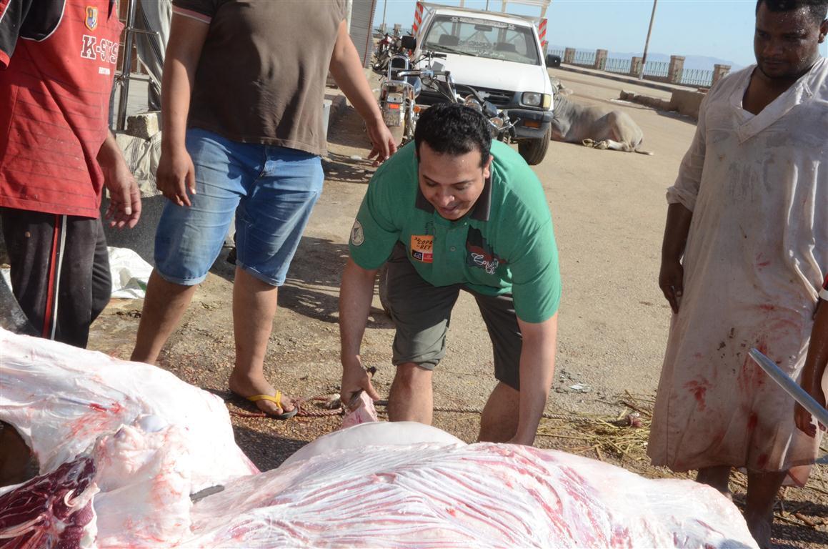 أهالي الأقصر يواصلون ذبح أضاحي العيد لليوم الثاني لتوزيع اللحوم علي الفقراء والأقارب (12)
