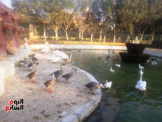 6-حديقة-الحيوان