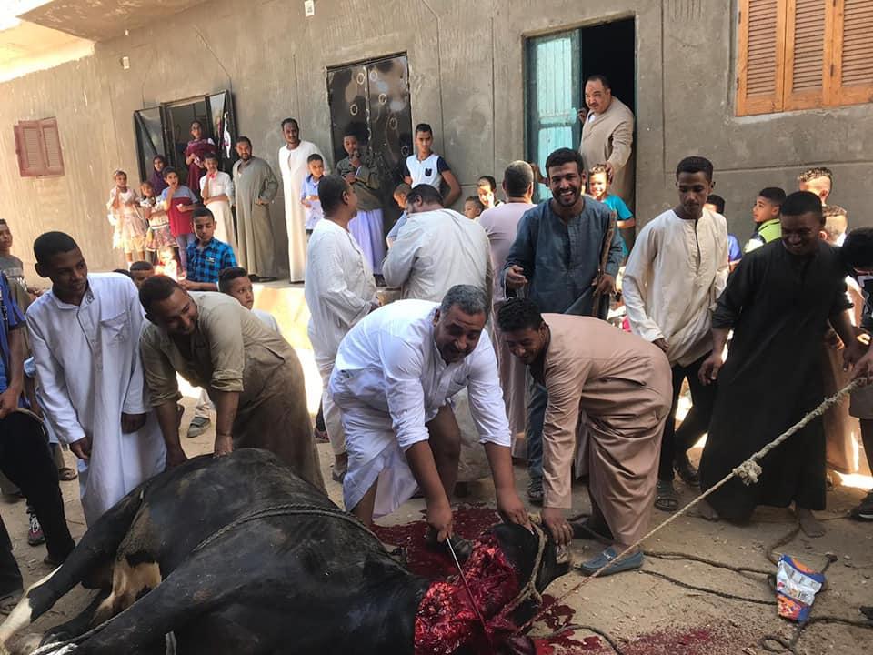 أهالي الأقصر يواصلون ذبح أضاحي العيد لليوم الثاني لتوزيع اللحوم علي الفقراء والأقارب (8)