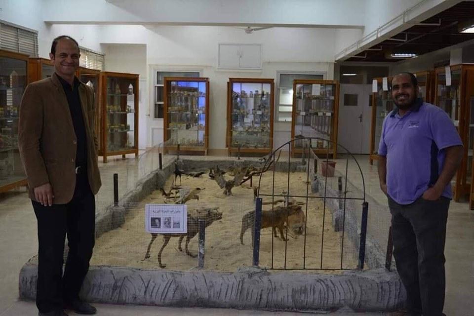 متحف الحيوانات بكلية العلوم  (10)