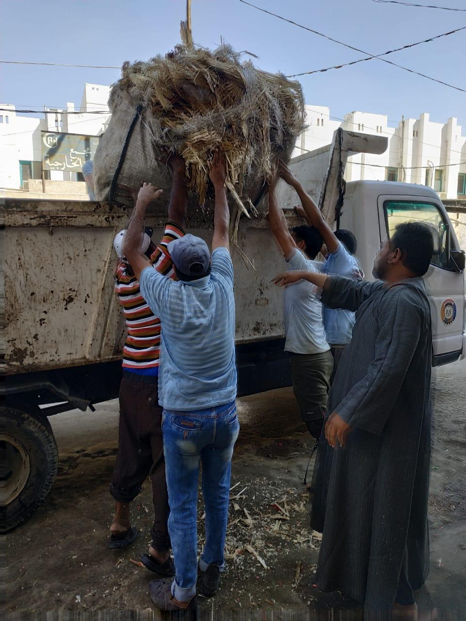 التصدى لبناء مخالف غرب الإسكندرية  (3)