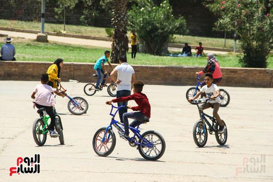 الاطفال يستمتعون بركوب العجل بالحديقة