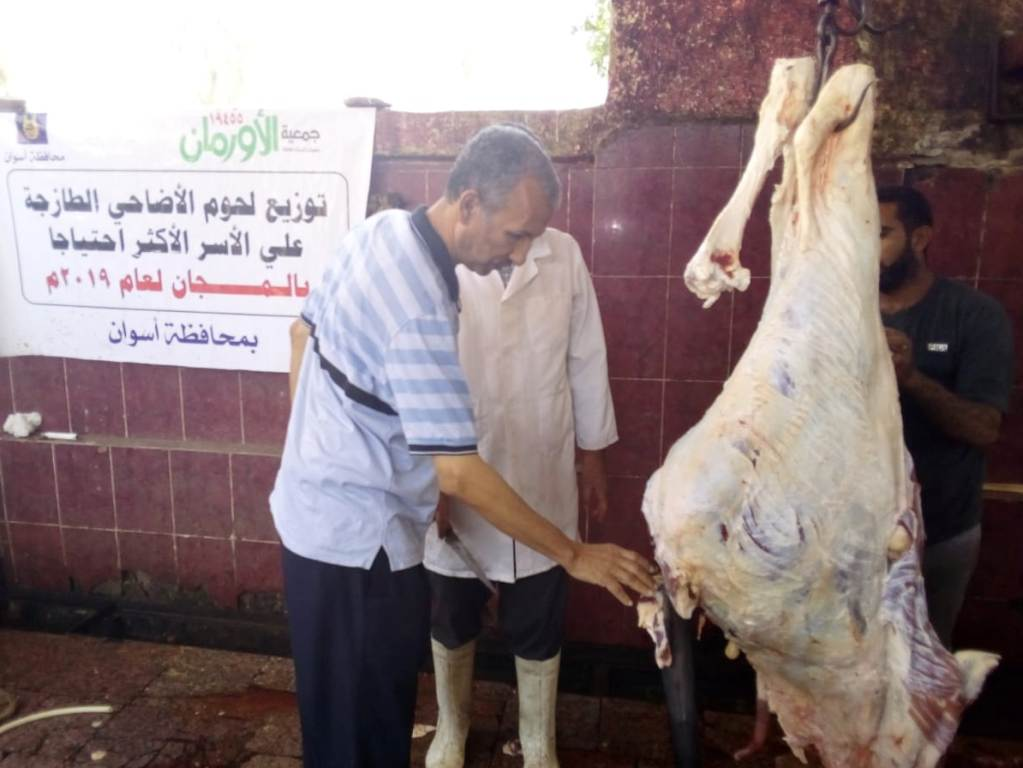 المجازر البيطرية تواصل ذبح الأضاحى بالمجان للمواطنين بأسوان (3)