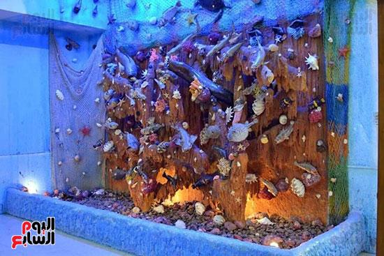 كائنات-بحرية-داخل-متحف-العلوم