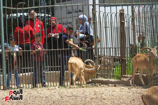اقبال علي حديقة حيوان الجيزة