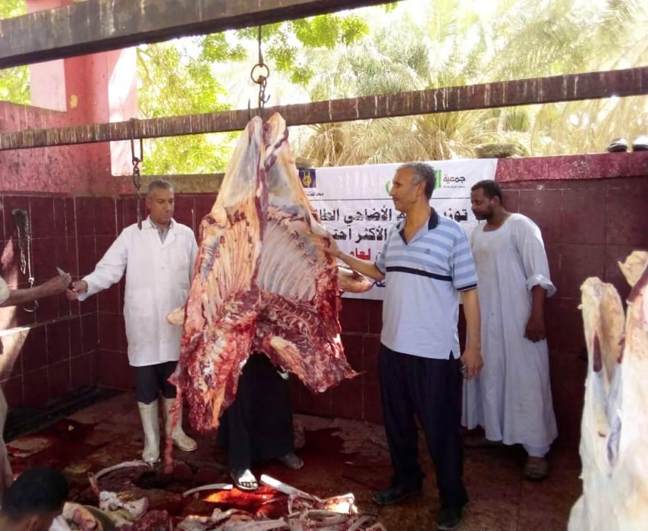 المجازر البيطرية تواصل ذبح الأضاحى بالمجان للمواطنين بأسوان (5)