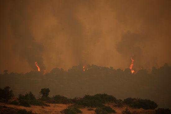 حرائق هائلة بغابات جزيرة إيفيا فى اليونان (1)