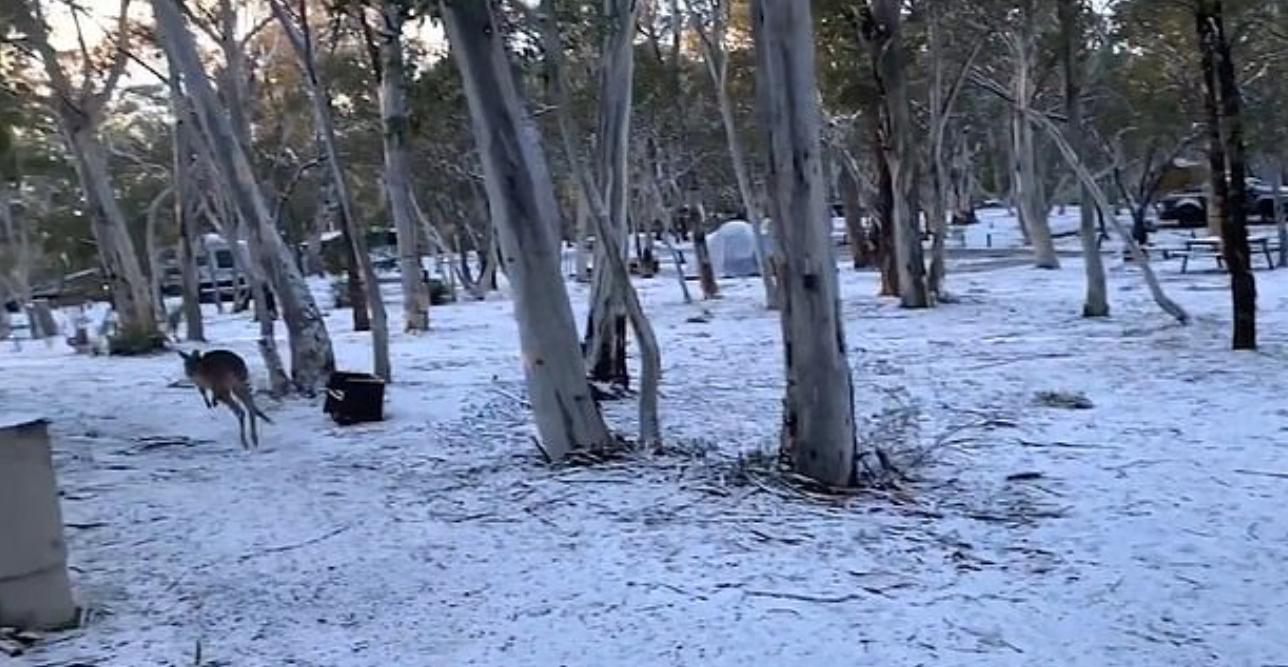 الطقس فى استراليا