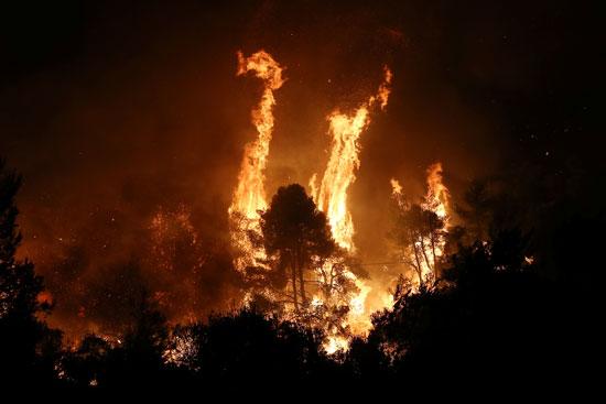 حرائق هائلة بغابات جزيرة إيفيا فى اليونان (9)