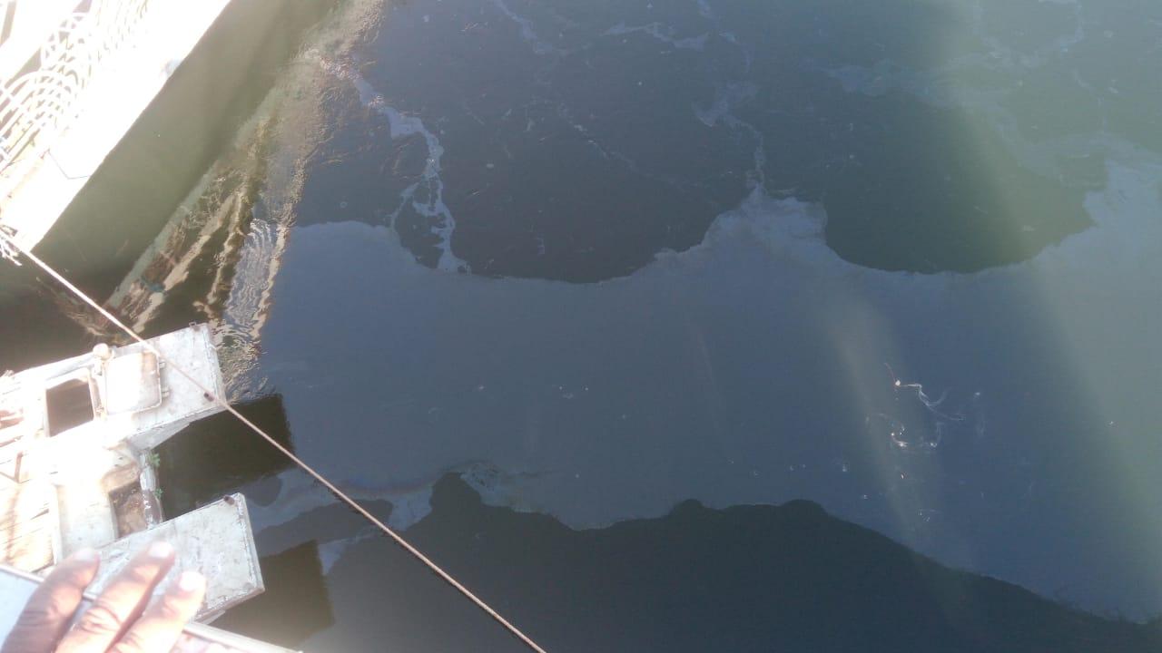 تسرب مواد بترولية في نهر النيل بالأقصر وشركة المياة تتعامل بالغطاسين والحواجز (1)
