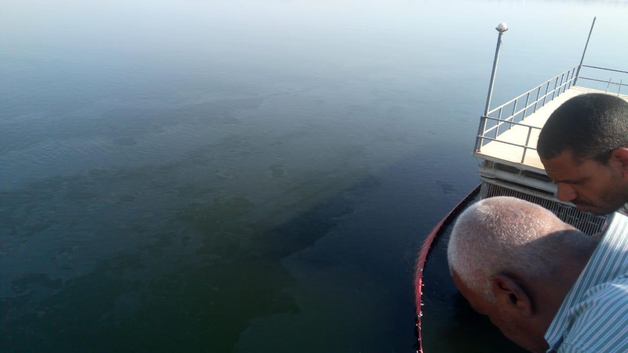 تسرب مواد بترولية في نهر النيل بالأقصر وشركة المياة تتعامل بالغطاسين والحواجز (6)