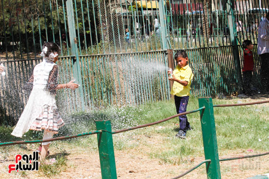 لعب  الاطفال في  حديقة الحيوانات