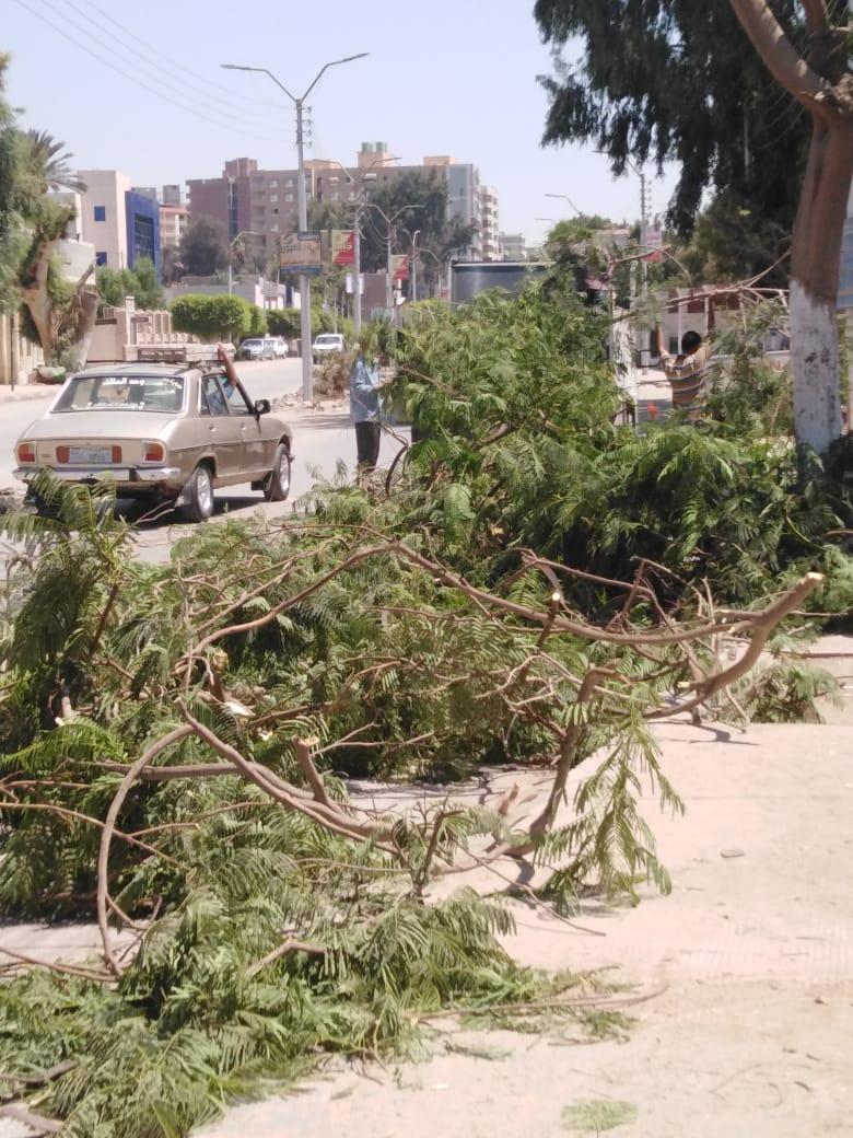 إزالة 5 حالات تعد على الأراضى  ورفع 250 طن قمامة ببنى سويف  (2)