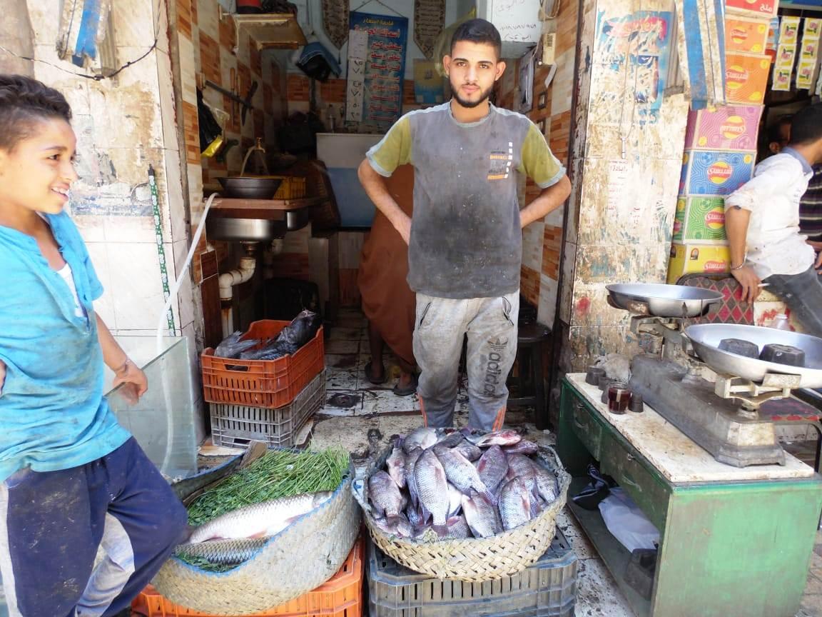 تراجع  فى أسعار الأسماك (10)