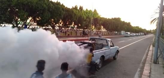 حملة لمكافحة الناموس والذباب من الشوارع والميادين العامة (2)