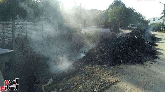 9--حرق-المخلفات-بجانب-ترعة-القرية