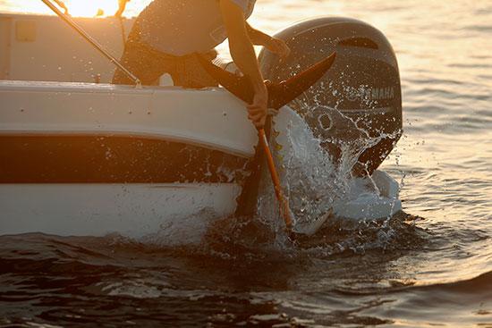 صيد سمك التونة (5)