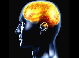 تعرف على هرمونات السعادة بالمخ