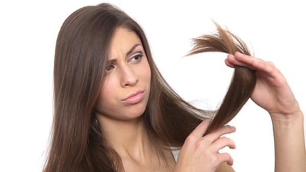 الشعر المتقصف