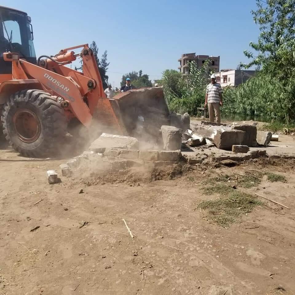 إزالة التعديات على الأراضى الزراعية بالبحيرة (1)