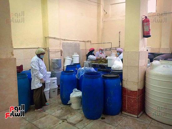 تصنيع-ورق-العنب-لتصديره-للخارج-(4)