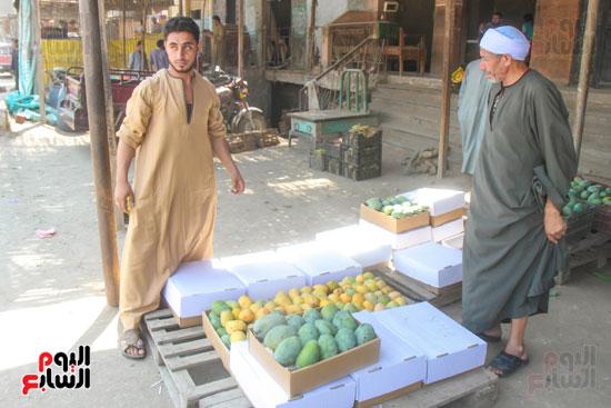 تجار المانجو (3)