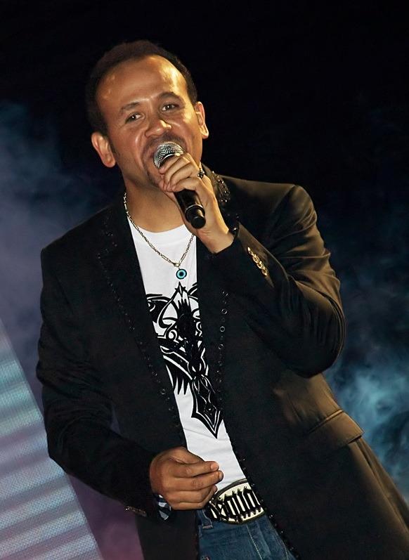 هشام عباس (2)