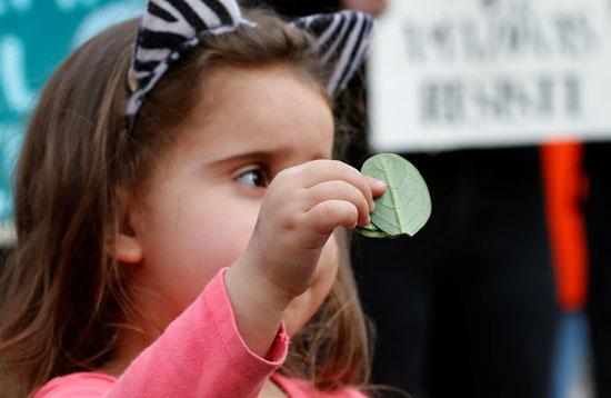طفلة تشارك فى الاحتجاج