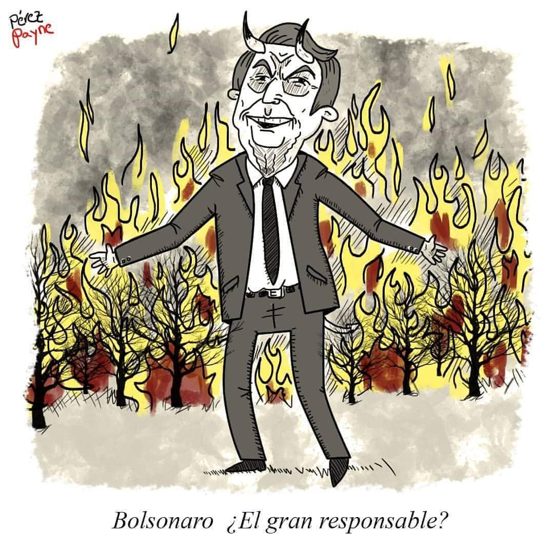 الرئيس البرازيلى يشعل انيران فى غابات الامازون