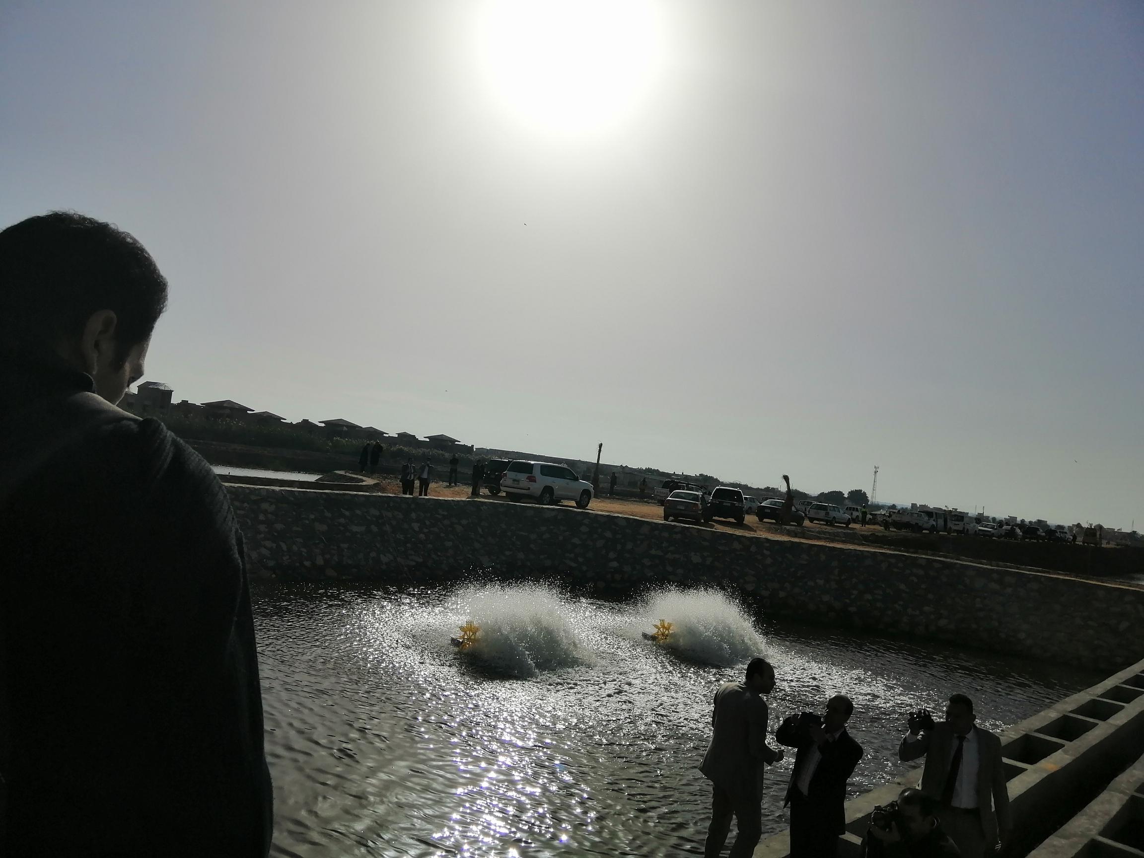 بحيرة قارون (5)