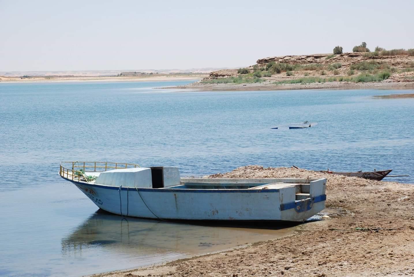 بحيرة مفيض توشكى (9)