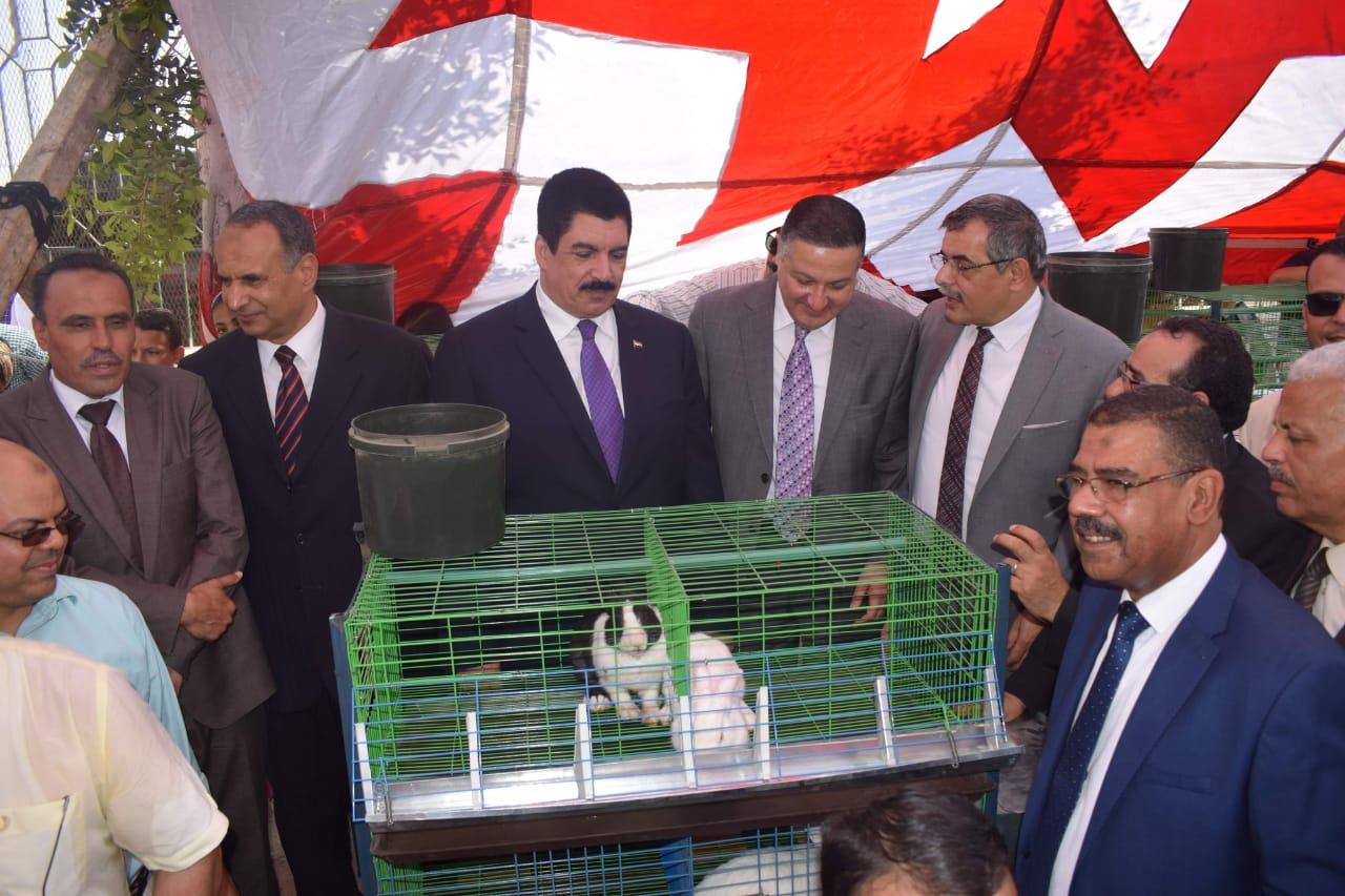 محافظ القليوبية ورئيس جامعة بنها يتفقدان مشروع تطوير قرية كفر فرسيس (3)