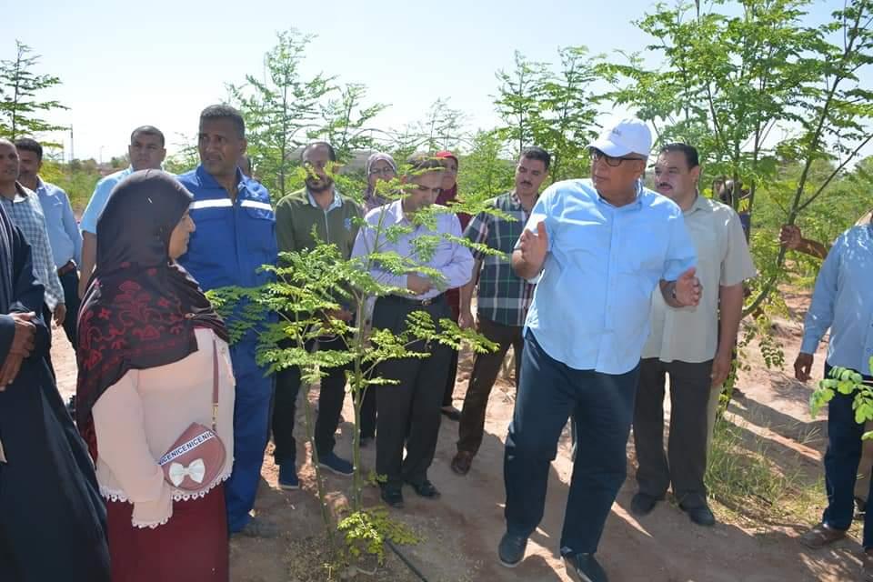 محافظ الوادى الجديد يتفقد مشروع زراعة أشجار المورينجا (1)