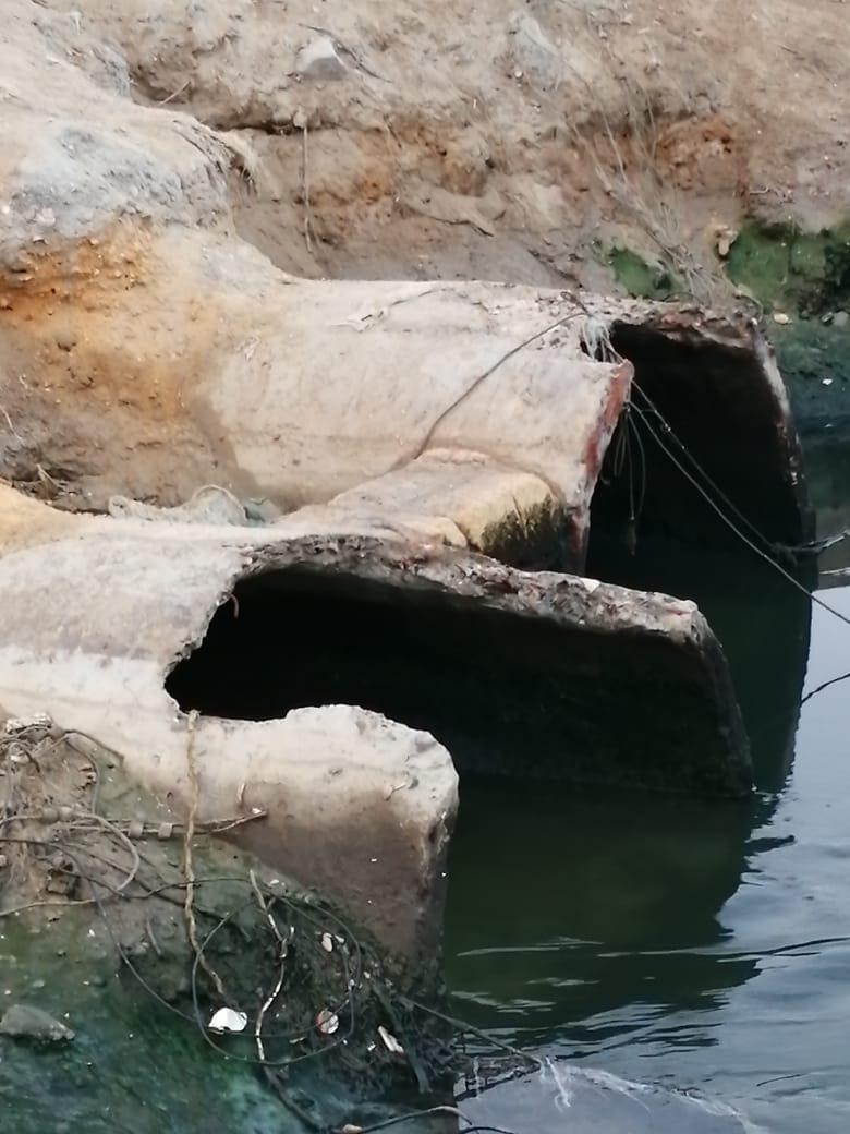 إلقاء مخلفات الصرف الصحى والزراعى فى البحيرة المرة بفنارة تقضى على الثروة السمكية والسياحة (1)