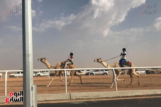 انتصار جديد لمصر فى سباق ولى العهد للهجن بالسعودية (10)