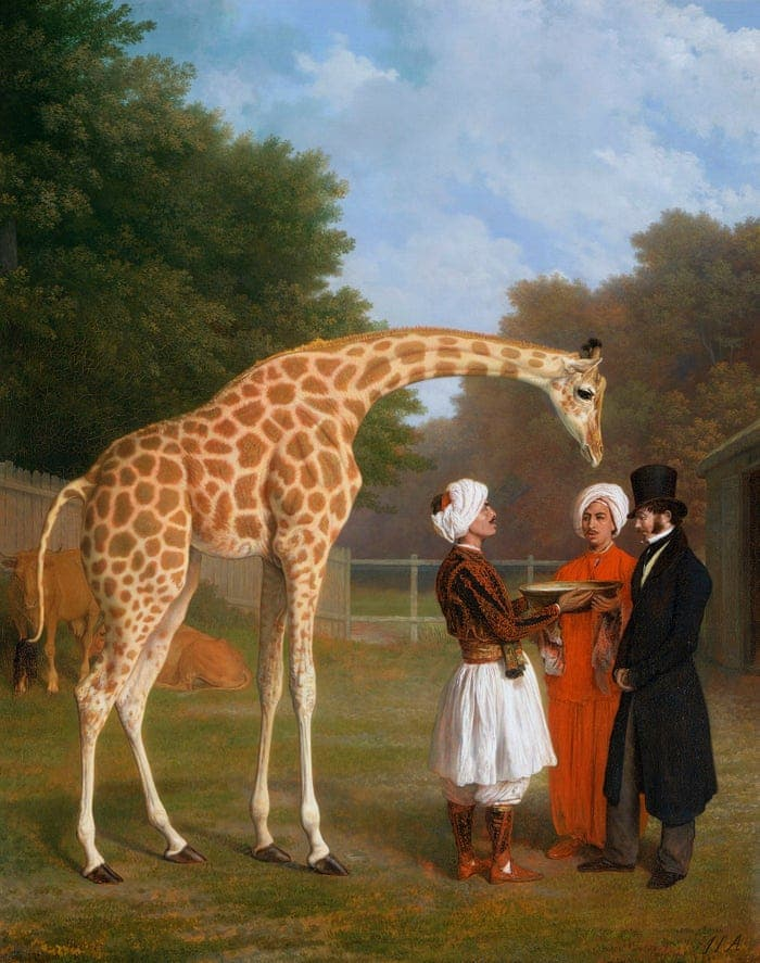A painting of a giraffe donated by the Egyptians to Britain