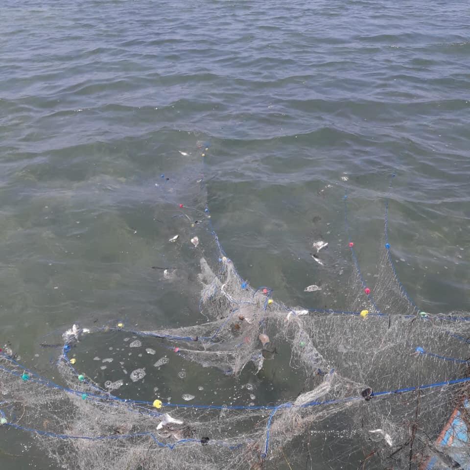 ضبط أدوات صيد مخالفة ببحيرة البردويل  (1)