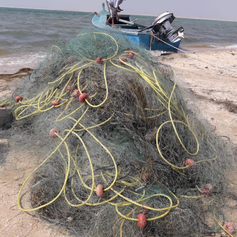 ضبط أدوات صيد مخالفة ببحيرة البردويل  (4)