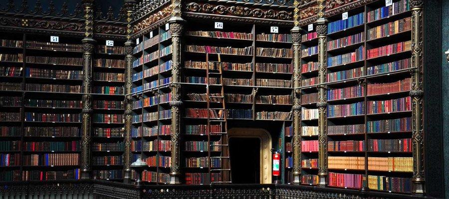 أرفف الكتب