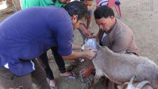 قوافل حياة كريمة بقرية ههيا (9)
