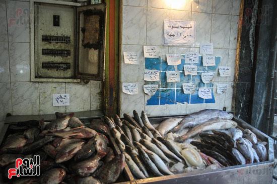 أنواع وأسعار الأسماك